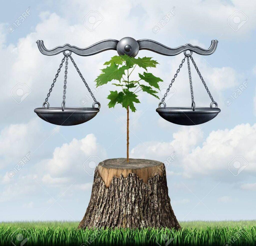 natura diritti tribunale